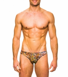 Bonita Tan Through Swim Brief