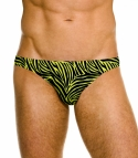 Jagger Micro Brief